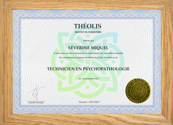 certificat encadré bois